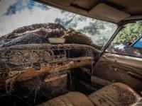 citroen-cmentarzysko-samochodow-cars-graveyard-France-Francja-lieux-abandonnes-urbex-urban-exploration-abandoned-miejsca-opuszczone-urbex.net_.pl-11