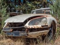 citroen-cmentarzysko-samochodow-cars-graveyard-France-Francja-lieux-abandonnes-urbex-urban-exploration-abandoned-miejsca-opuszczone-urbex.net_.pl-14