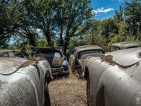 citroen-cmentarzysko-samochodow-cars-graveyard-France-Francja-lieux-abandonnes-urbex-urban-exploration-abandoned-miejsca-opuszczone-urbex.net_.pl-15