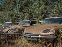 citroen-cmentarzysko-samochodow-cars-graveyard-France-Francja-lieux-abandonnes-urbex-urban-exploration-abandoned-miejsca-opuszczone-urbex.net_.pl-17