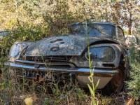 citroen-cmentarzysko-samochodow-cars-graveyard-France-Francja-lieux-abandonnes-urbex-urban-exploration-abandoned-miejsca-opuszczone-urbex.net_.pl-19
