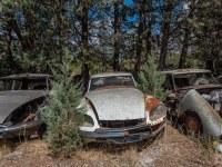 citroen-cmentarzysko-samochodow-cars-graveyard-France-Francja-lieux-abandonnes-urbex-urban-exploration-abandoned-miejsca-opuszczone-urbex.net_.pl-4