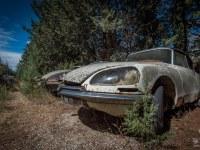 citroen-cmentarzysko-samochodow-cars-graveyard-France-Francja-lieux-abandonnes-urbex-urban-exploration-abandoned-miejsca-opuszczone-urbex.net_.pl-6