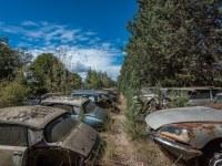 citroen-cmentarzysko-samochodow-cars-graveyard-France-Francja-lieux-abandonnes-urbex-urban-exploration-abandoned-miejsca-opuszczone-urbex.net_.pl-7