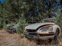 citroen-cmentarzysko-samochodow-cars-graveyard-France-Francja-lieux-abandonnes-urbex-urban-exploration-abandoned-miejsca-opuszczone-urbex.net_.pl-8