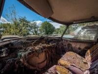 citroen-cmentarzysko-samochodow-cars-graveyard-France-Francja-lieux-abandonnes-urbex-urban-exploration-abandoned-miejsca-opuszczone-urbex.net_.pl-9