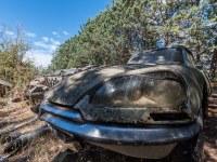citroen-cmentarzysko-samochodow-cars-graveyard-France-Francja-lieux-abandonnes-urbex-urban-exploration-abandoned-miejsca-opuszczone-urbex.net_.pl_