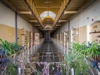 więzienie-prison-polska-poland-opuszczone-abandoned-urbex-10