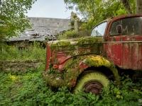 belgium-lost-pine-cones-urbex-urban-exploration-opuszczone-abandoned-urbex-net_-pl-decay-decayed-verlassen-1