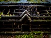 belgium-lost-pine-cones-urbex-urban-exploration-opuszczone-abandoned-urbex-net_-pl-decay-decayed-verlassen-10