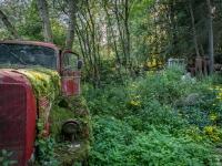 belgium-lost-pine-cones-urbex-urban-exploration-opuszczone-abandoned-urbex-net_-pl-decay-decayed-verlassen-4