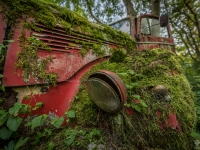 belgium-lost-pine-cones-urbex-urban-exploration-opuszczone-abandoned-urbex-net_-pl-decay-decayed-verlassen-5