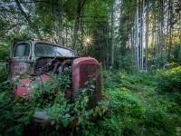 belgium-lost-pine-cones-urbex-urban-exploration-opuszczone-abandoned-urbex-net_-pl-decay-decayed-verlassen-7