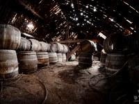 eylenbosch-brewery-abandoned-belgium-urbex