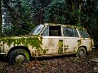 lada, belgium, car, abandoned, urbex-3