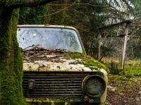 lada, belgium, car, abandoned, urbex-5
